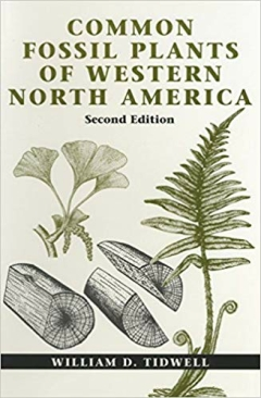 COMMON FOSSIL PLANTS OF WESTERN NORTH AMERICA - 2nd Edition