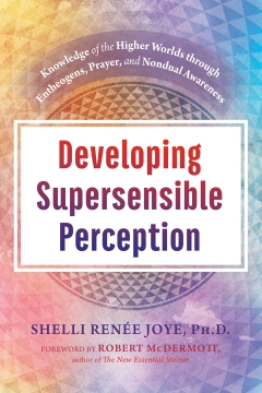 DEVELOPING SUPERSENSIBLE PERCEPTION HB