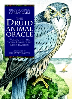 DRUID ANIMAL ORACLE  - Book & Cards