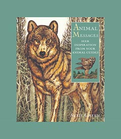 ANIMAL MESSAGES - Book and Card Set